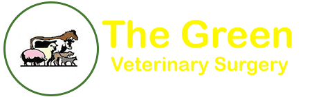 The Green Veterinary Surgery